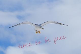 innere Freiheit erlangen ...