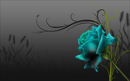 Blue Rose 3D and CG Wallpaper ID 106451 Desktop Nexus