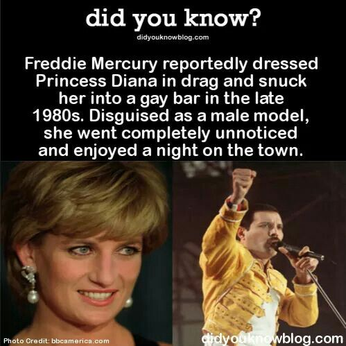 Of course he did. He's Freddie Mercury for God's sake #freddiemercuryquotes