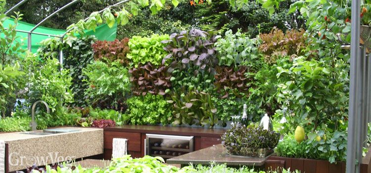 Ideas For Small Gardens Growing Vegetables Vertically Small Gardens Growing Vegetables Urban Garden