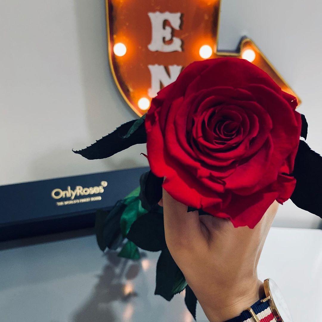 شفت السعادة يوم عيني شافتك Onlyroses Danielwellington Dubai Red Light Love Hand