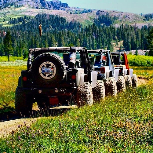 Jeeps on the Trail <3