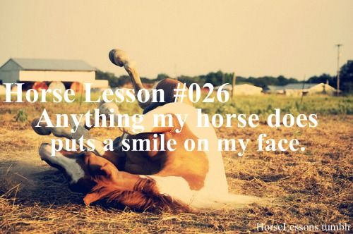 Horse lessons | Horse Lessons | Pinterest | Horse ... Horse Lessons Tumblr