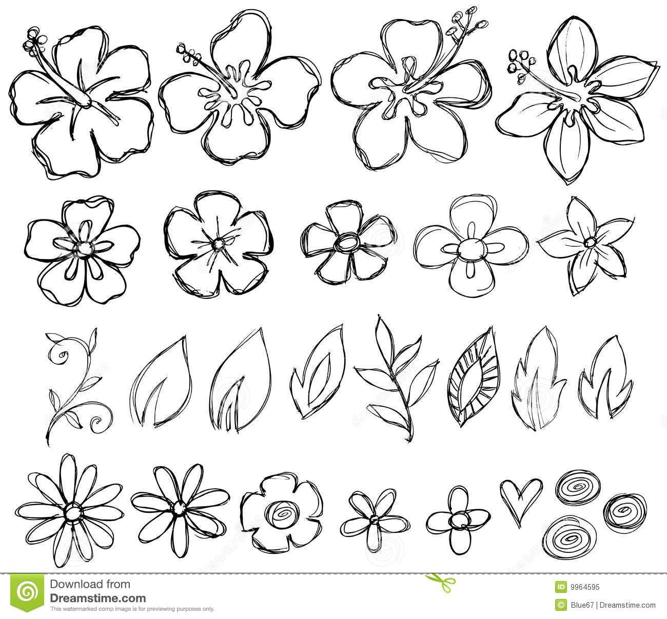 Illustration About Sketchy Doodle Tropical Flowers Leaves Vector Illustration Illustration Of Hawaiian Bea Flower Doodles Flower Drawing Doodle Art Flowers