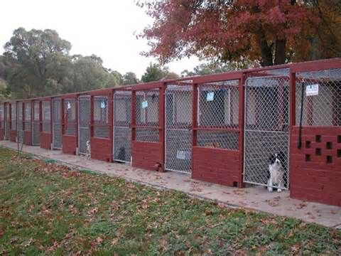 Dog Kennel Plans Yahoo Image Search Results