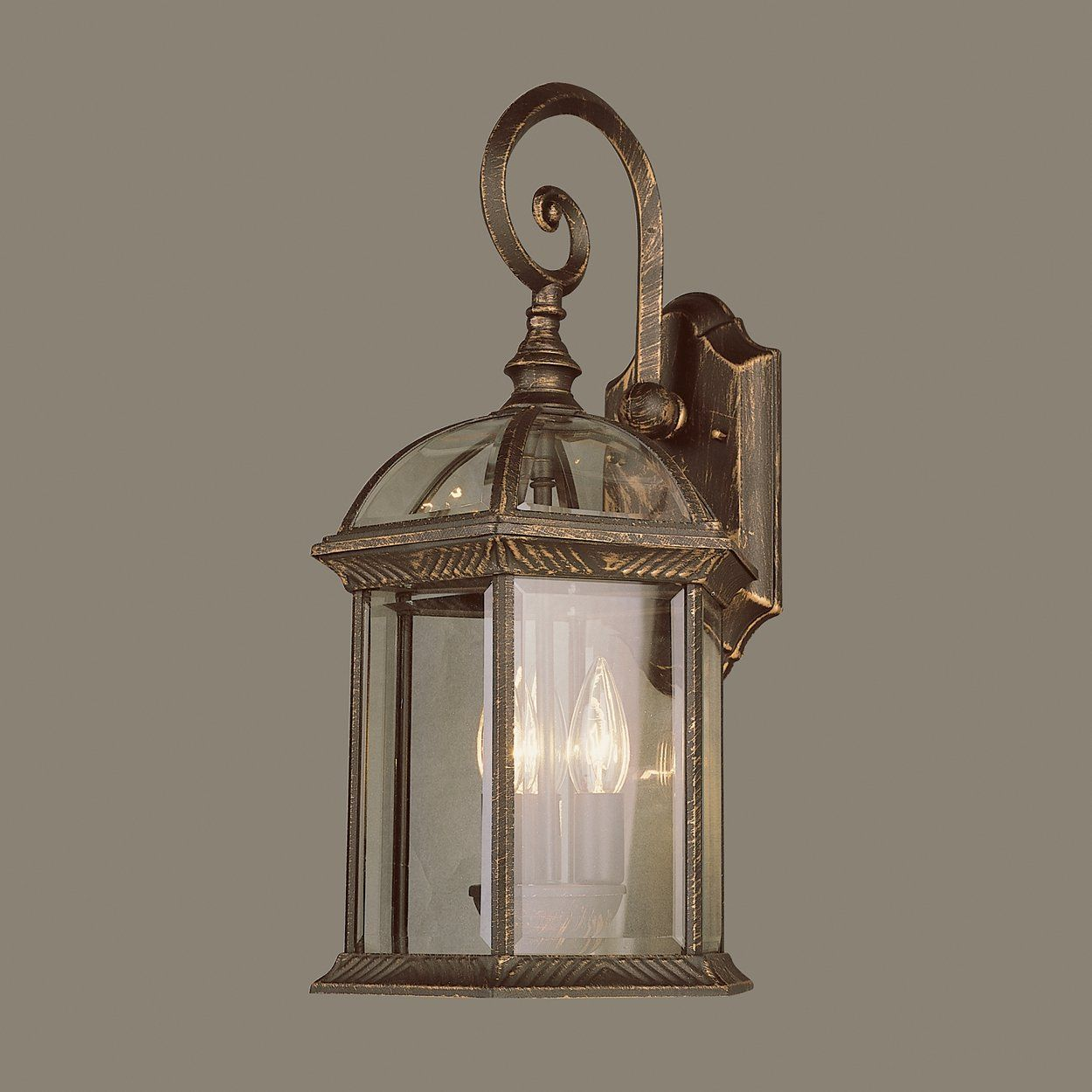 Trans globe botanica outdoor sconce atg stores traditional