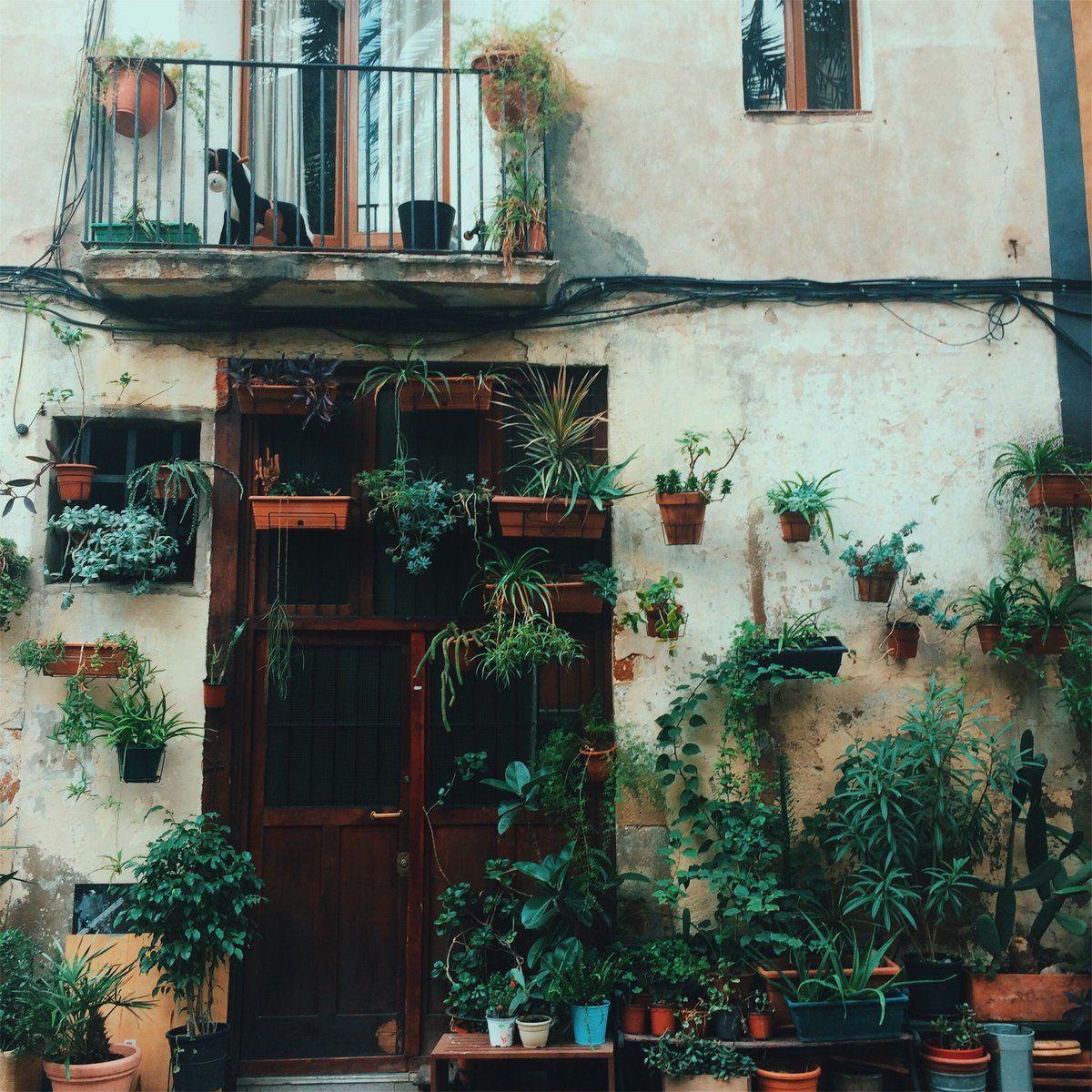 431 Twitter Dubrovnik Old Town Urban Village Building Facade