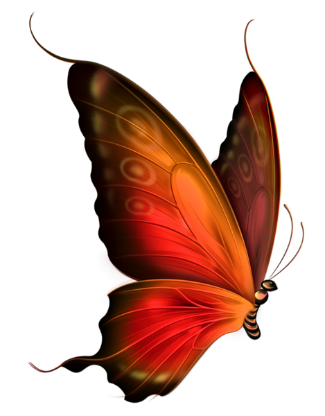 red and brown transparent butterfly clipart mariposas pinterest rh pinterest com butterfly clip art images over flowers butterfly clip art images of flowers