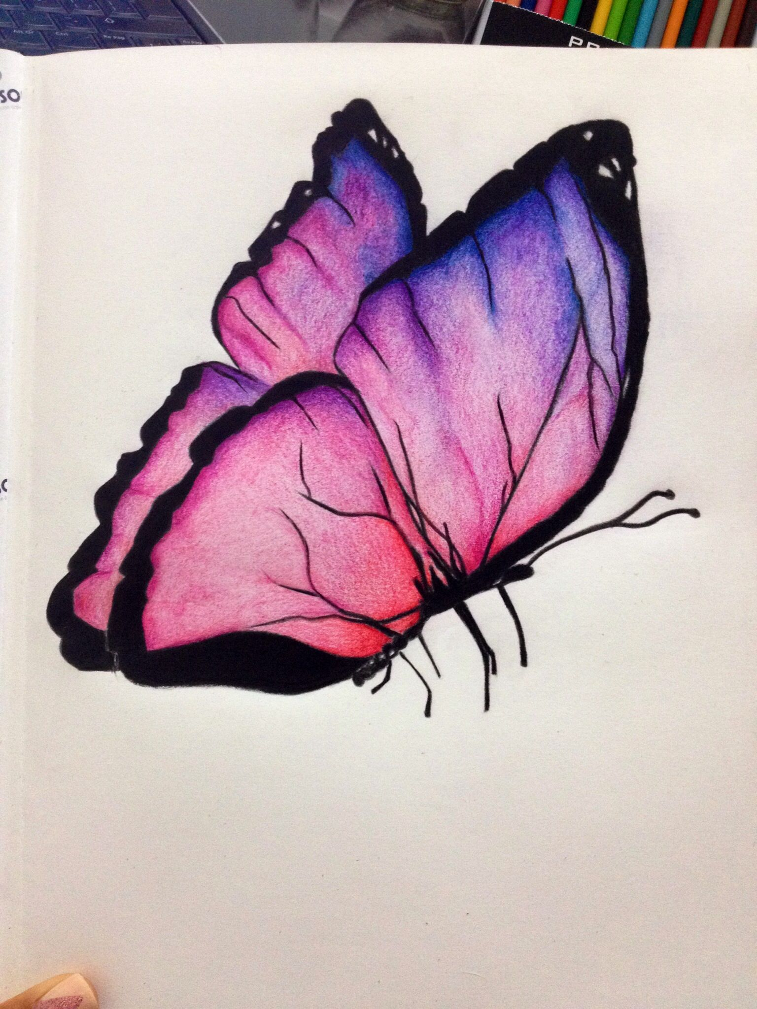 My First Butterfly Art Drawings Beautiful Butterfly Drawing