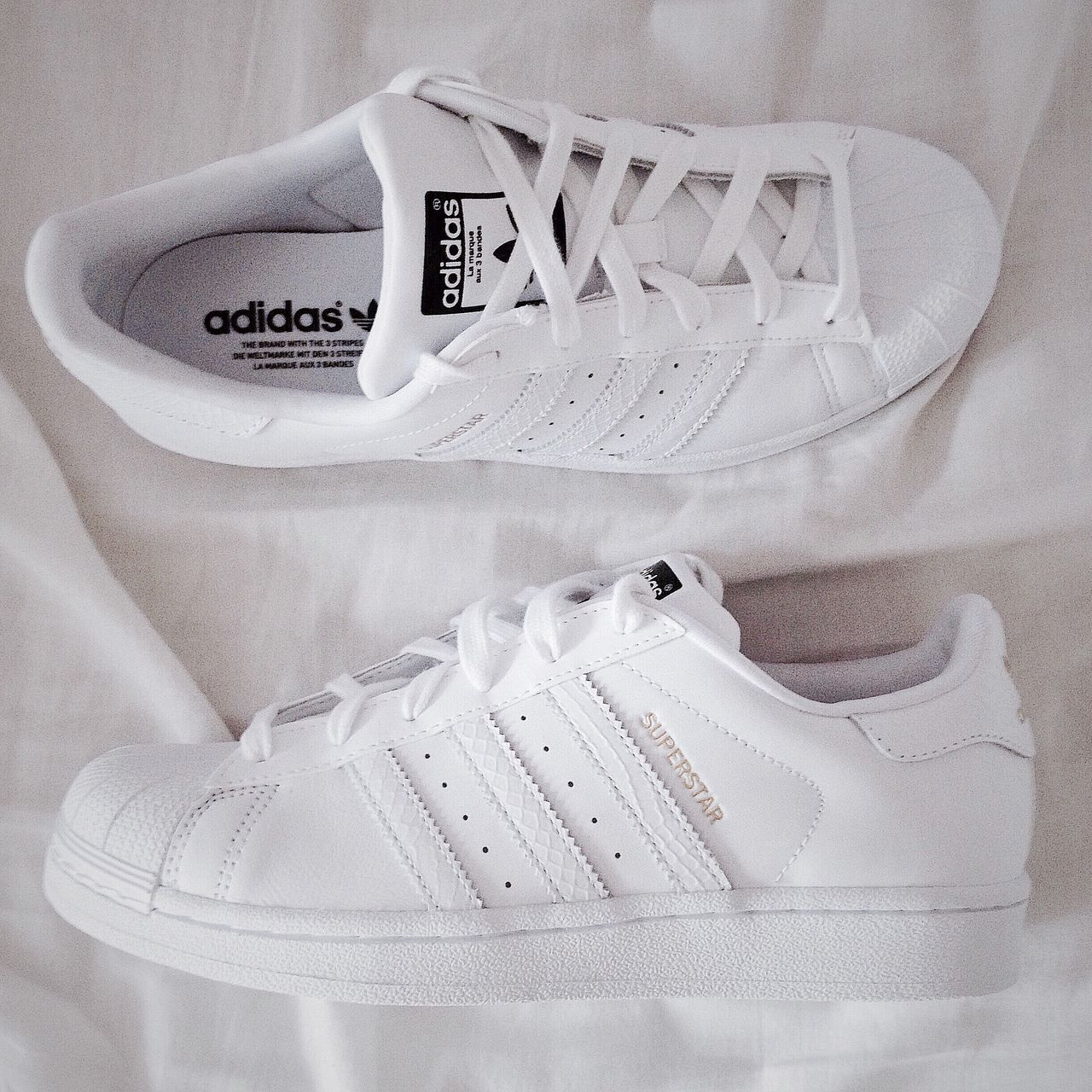 My girlfriend loves to  her adidas adidas her Superstars and I love it too e299df
