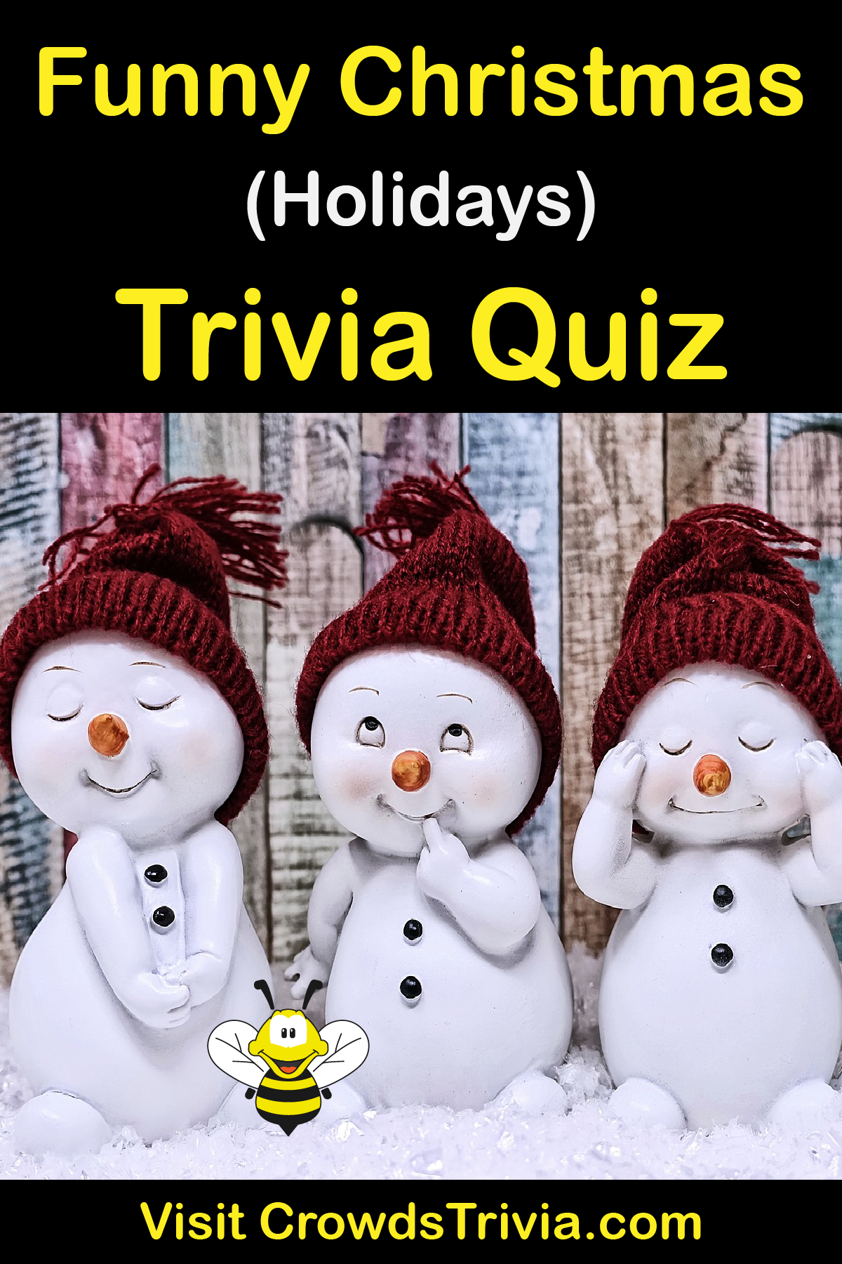 Christmas Facts 2020 Funny Funny Christmas   Trivia Quiz | Questions and Answers | Fun Facts
