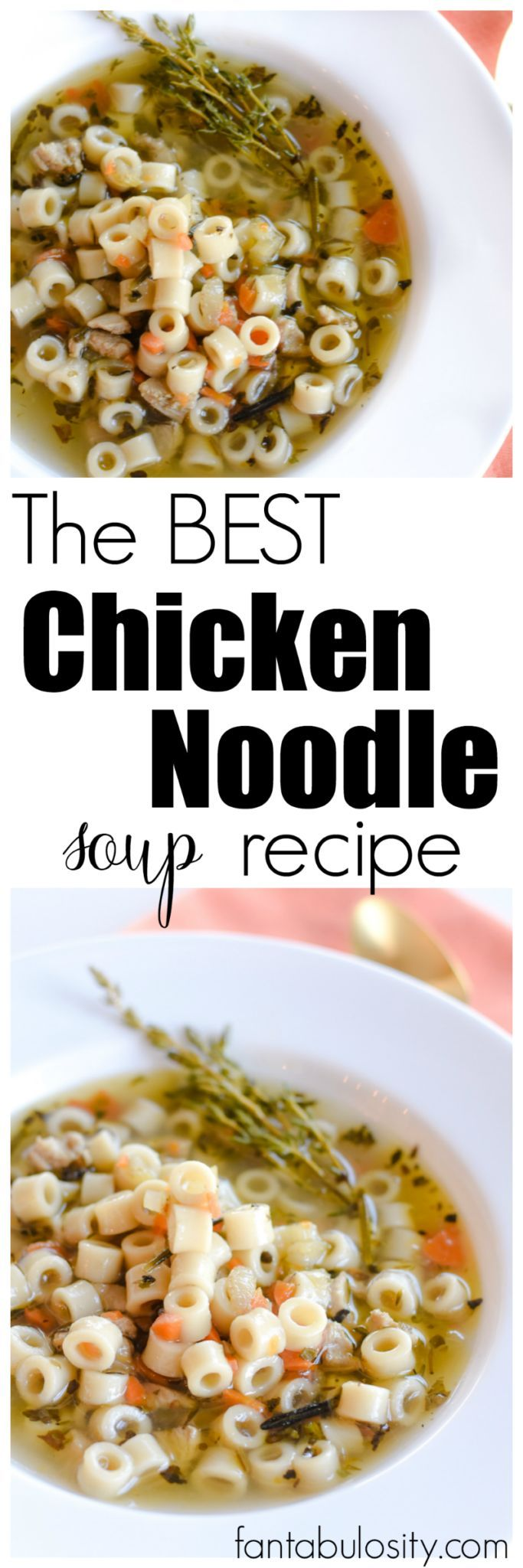 The Best Chicken Noodle Soup Recipe - Quick and Easy