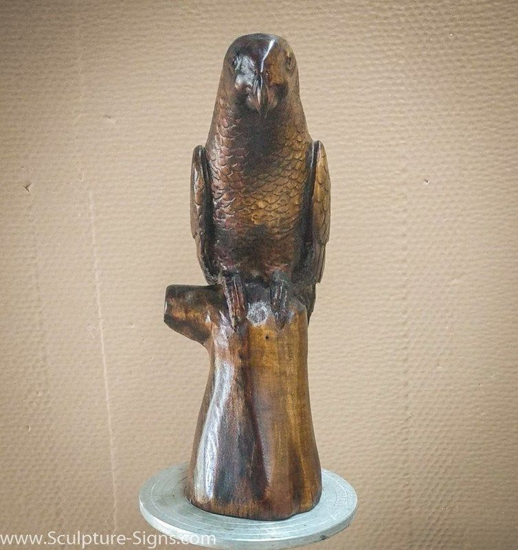 edited25 African grey parrot, African grey, Carving