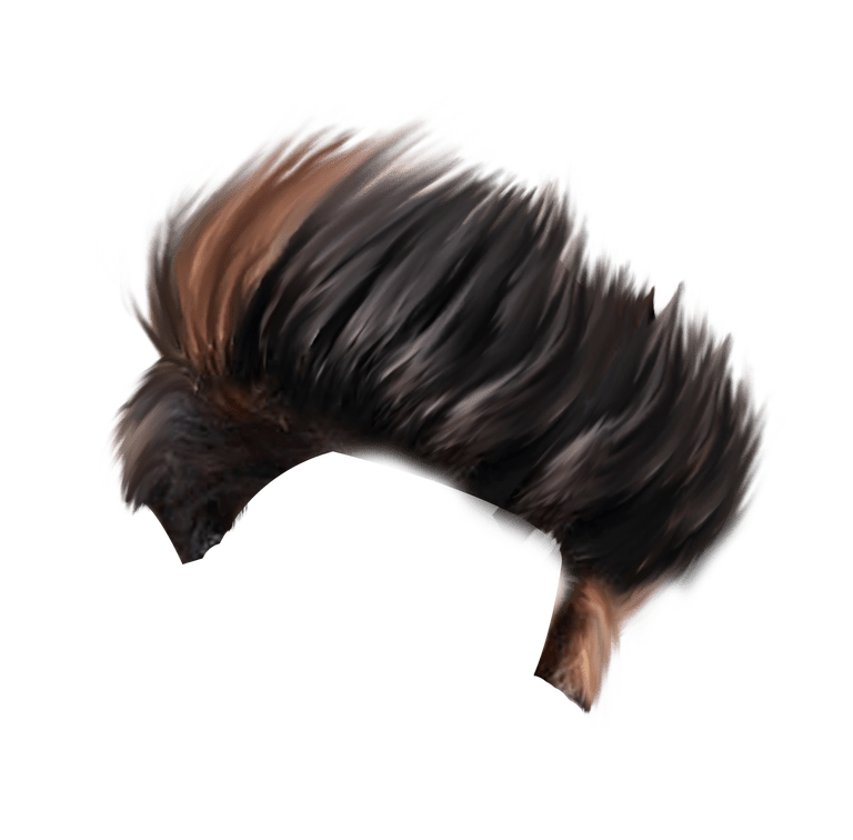 Cb Hair Png Hd Download Hair Png Photoshop Backgrounds Photoshop Backgrounds Free