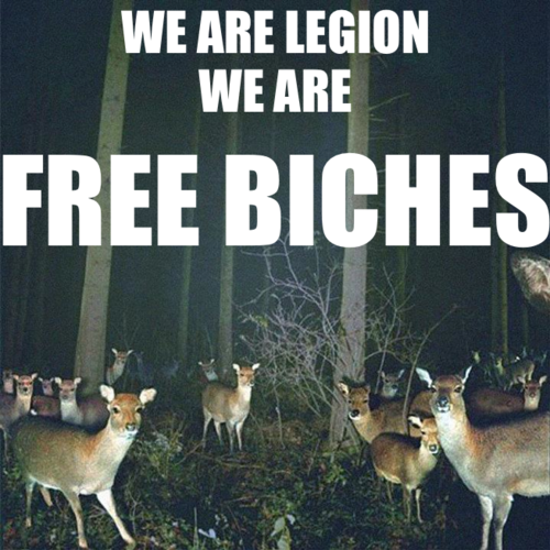 we are legion, FREE BICHES