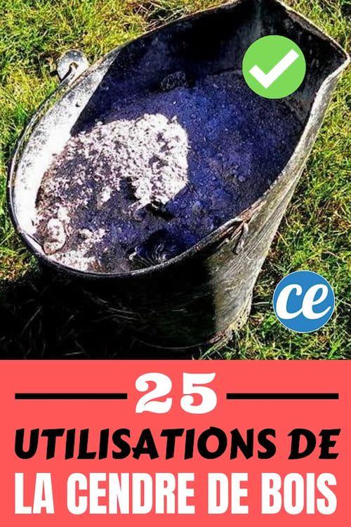 Cendre De Bois Les 25 Meilleures Utilisations Que Personne Ne