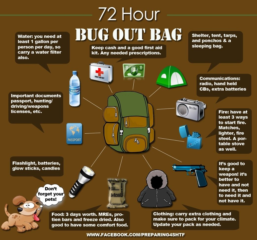 Image result for bugging out infographic