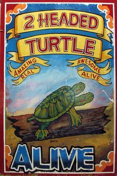 Vintage Poster Freak Show Head Turtle