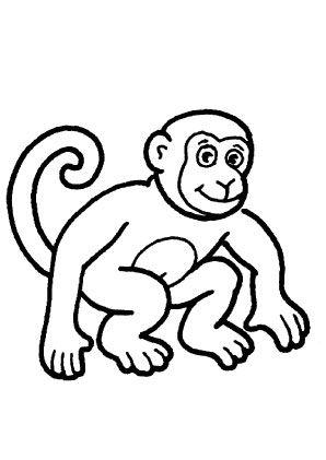 Affe Ausmalbild Ausmalbilder Für Kinder Schule