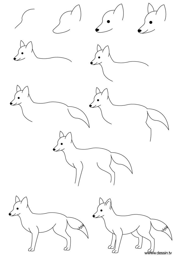 How To Draw A C Cute Fox And Its Easy With Images Easy