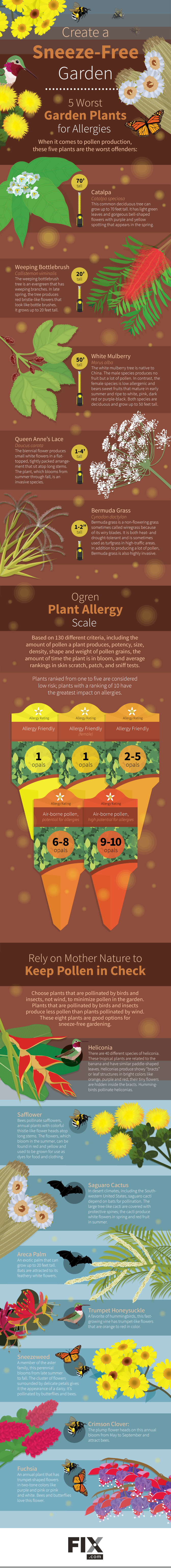 Create a Sneeze-Free Garden #Infographic
