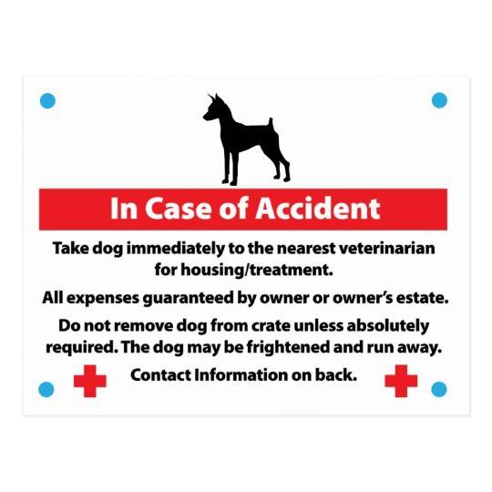 Dog Crate Card In Case Of Emergency Zazzle Com Dog Training