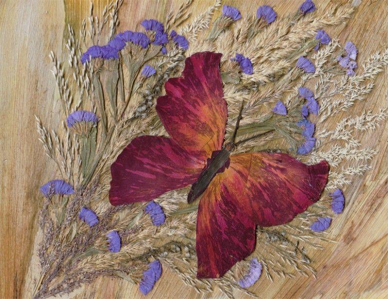 Открытки из засушенных листьев и цветов