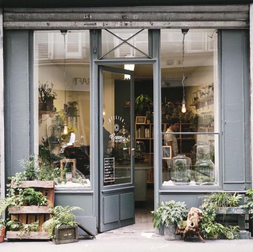 Birdasaurus Mujgan Afra Ozceylan Flower Shop Interiors Shop Interior Design Front Door Design