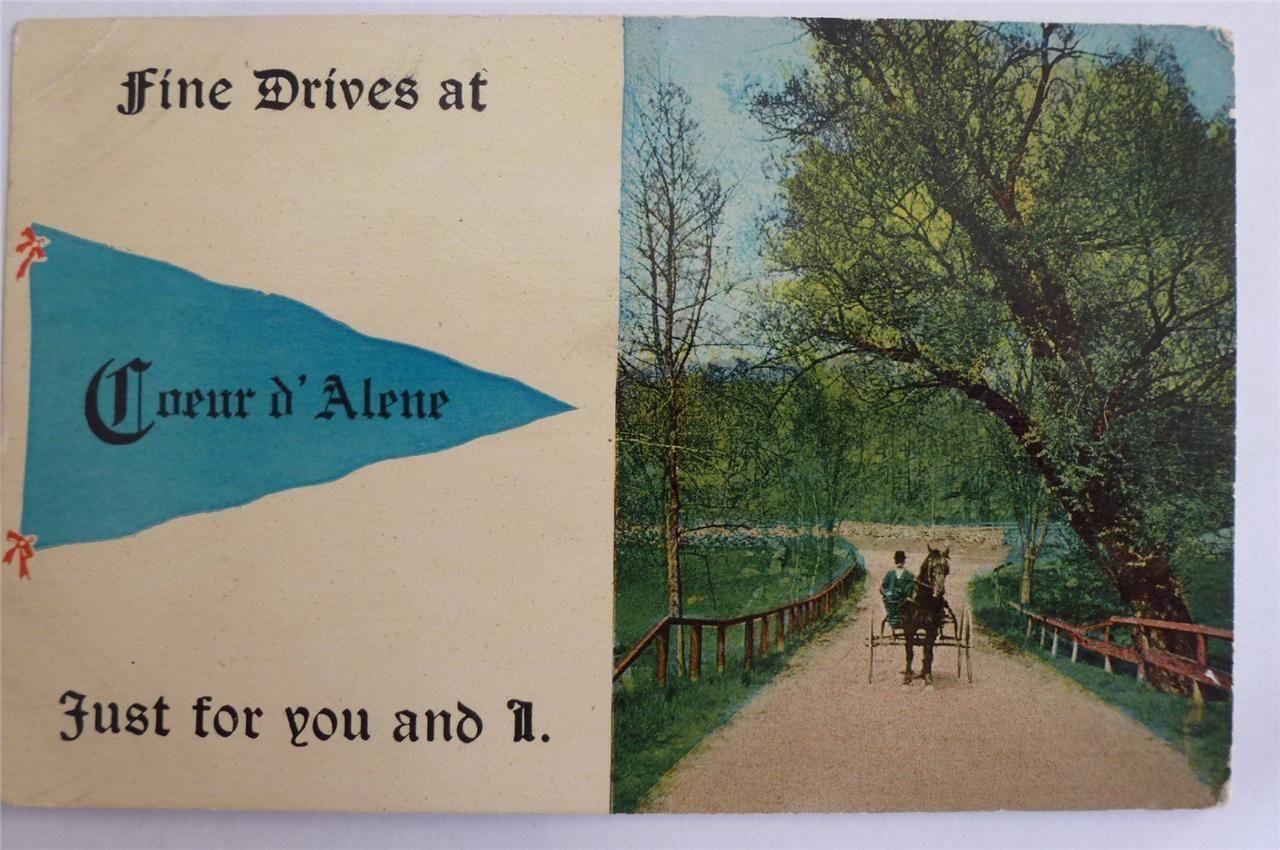 Postcard Idaho Coeur D'Alene Greeting Pennet Fine Drives Man in Carriage