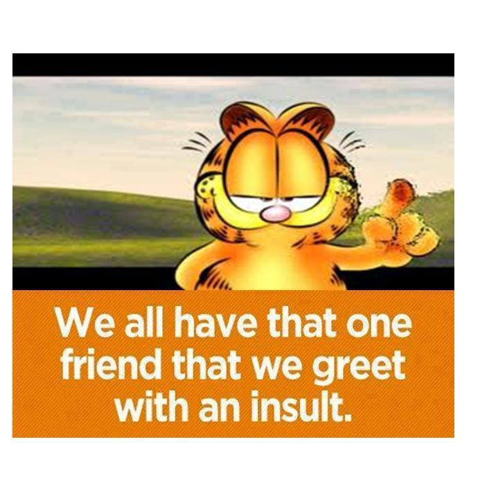 Garfield Friends Quotes Funny Friendship Quotes Funny Friends Funny
