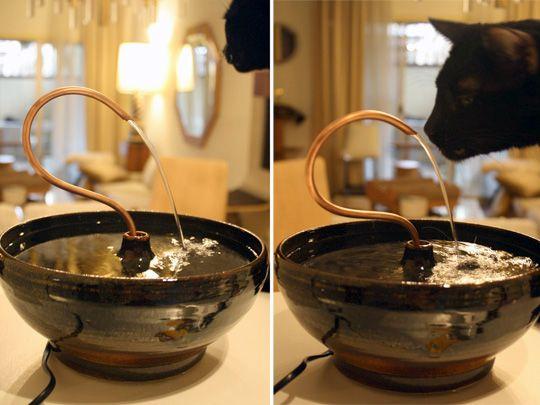 New Cat Tap Ceramic Fountain From Keith Davitt Enter To Win Moderncat Cat Cat Water Fountain Cat Fountain Water Fountain