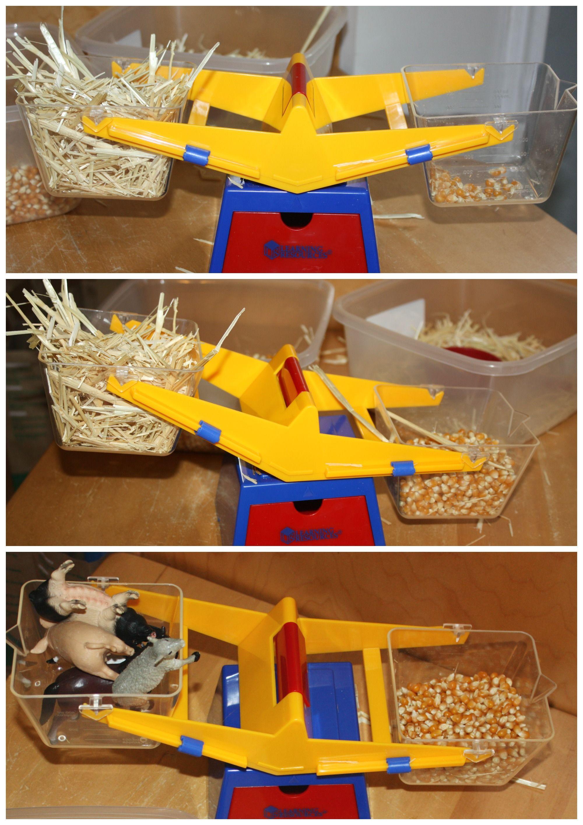 Preschool Farm Activities And Sensory Play Ideas For Math Science