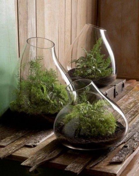 ingeniosas-decoraciones-interior-con-plantas-01 Mini Jardines