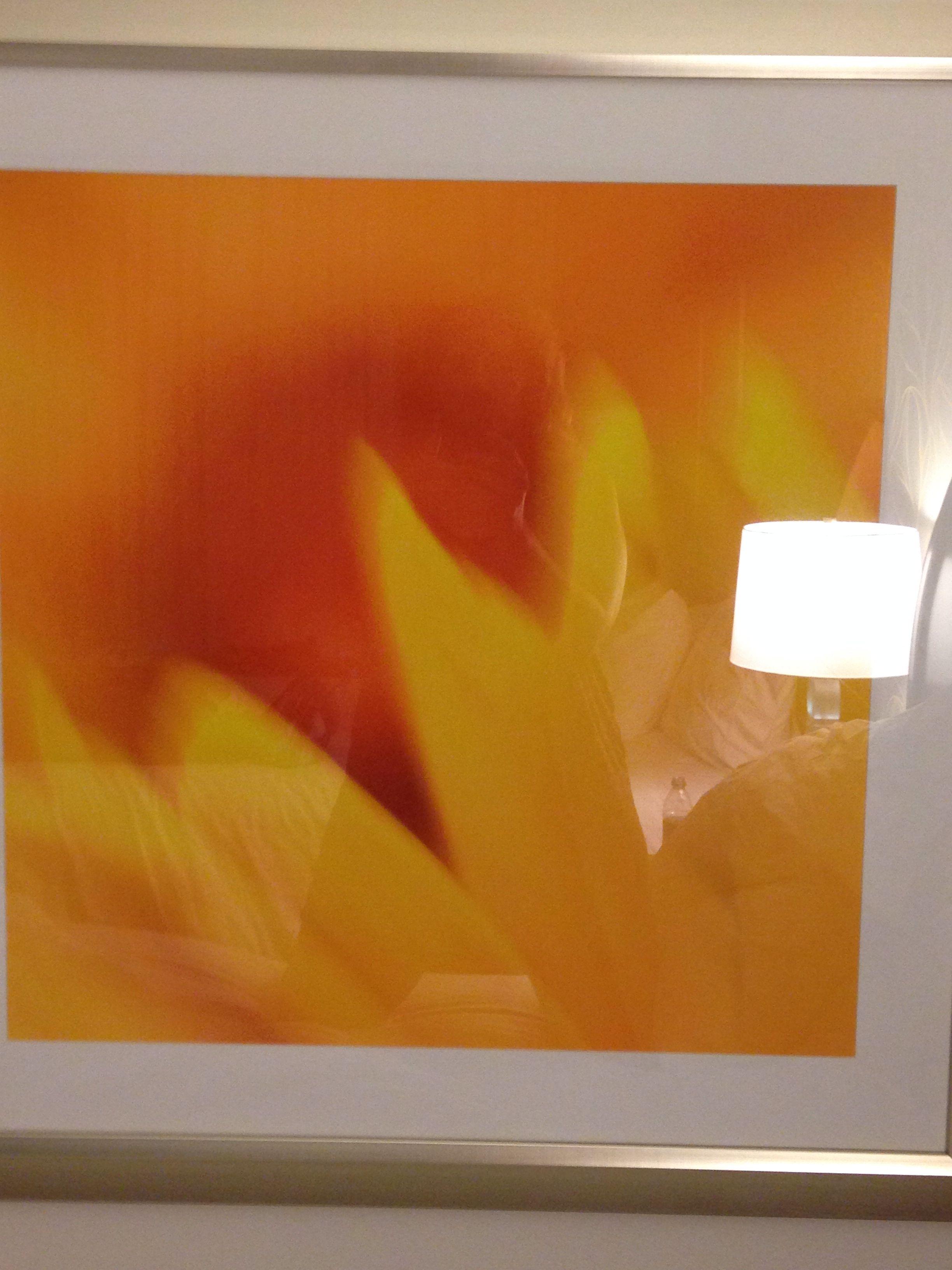 Think turquoise sky, orange/yellow sun, red petals.