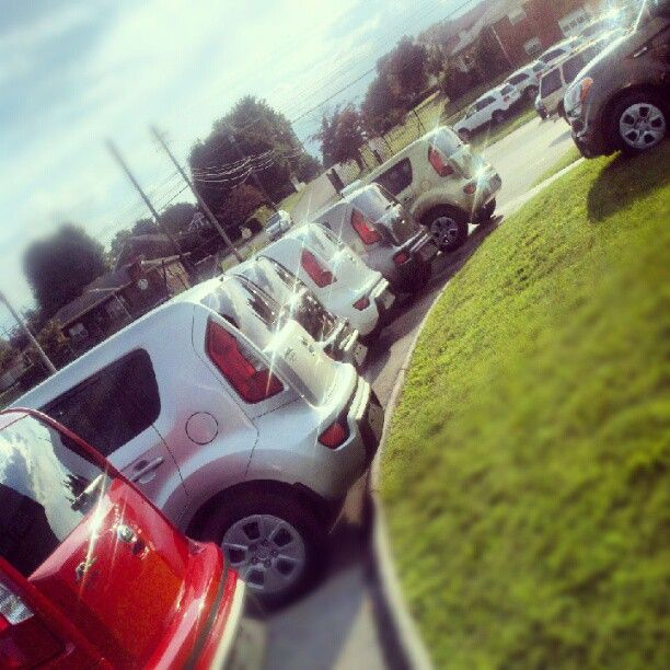 Our Current Line Up Of Kia Souls At Rusty Wallace Cadillac GMC Kia. #Kia