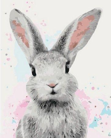 Взгляд кролика   Кролик в искусстве, Картины, Иллюстрации