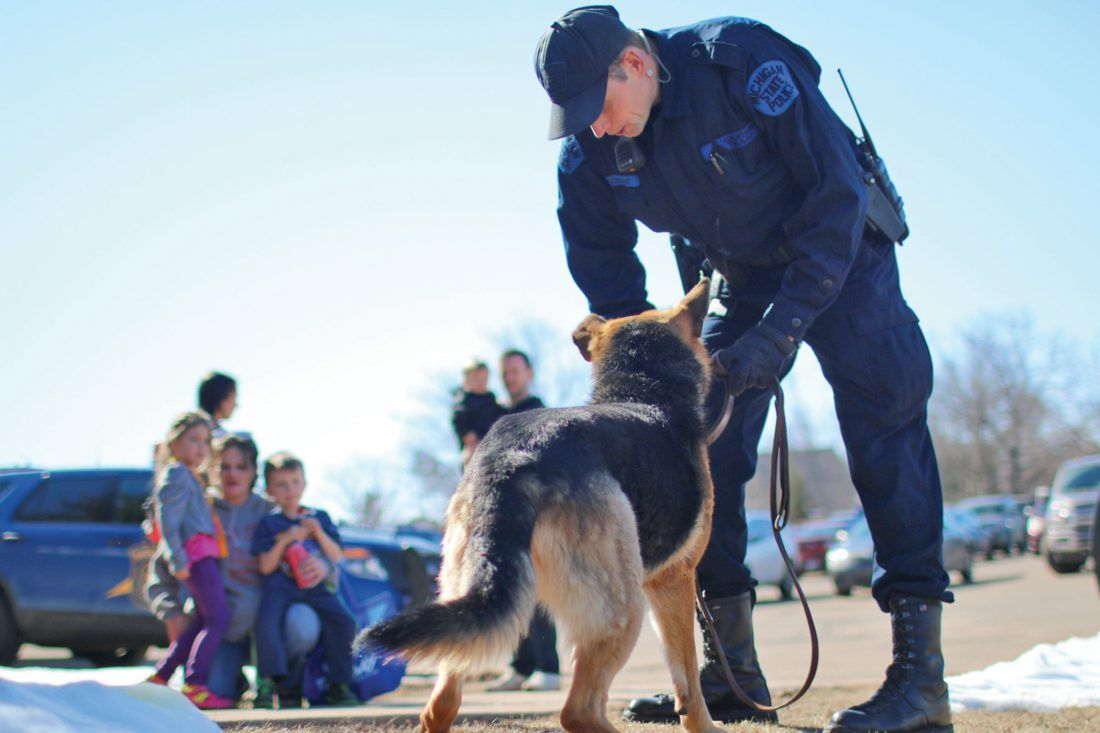 There Are Currently 50 Police Dogs Working Throughout The State Of