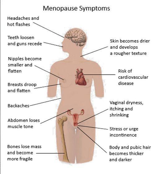 symptome pre menaupose