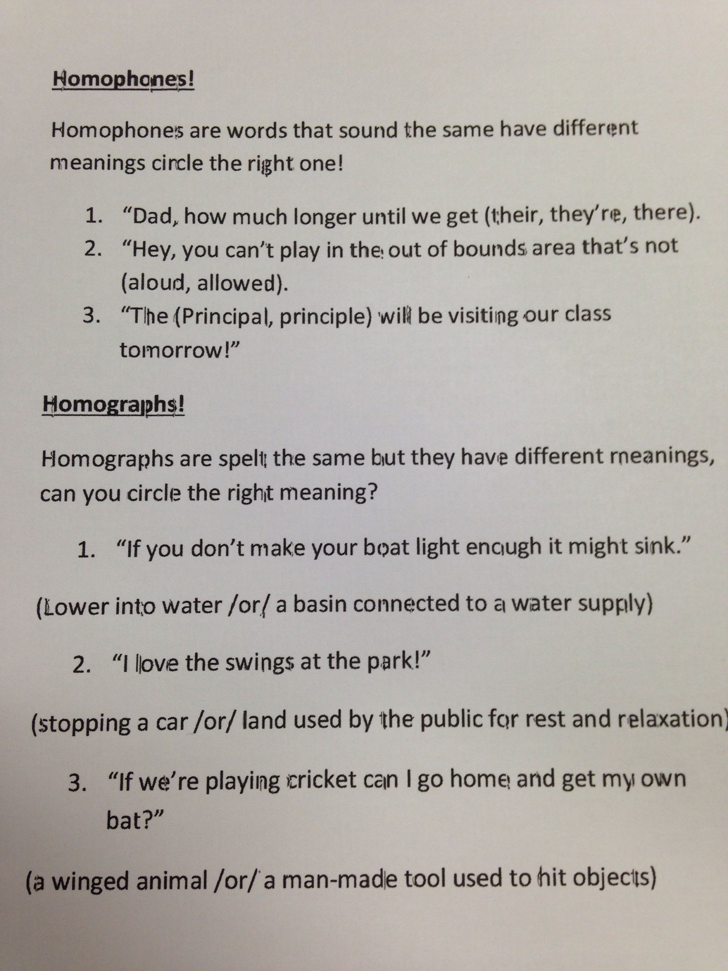 Homophones And Homographs Worksheet Activity