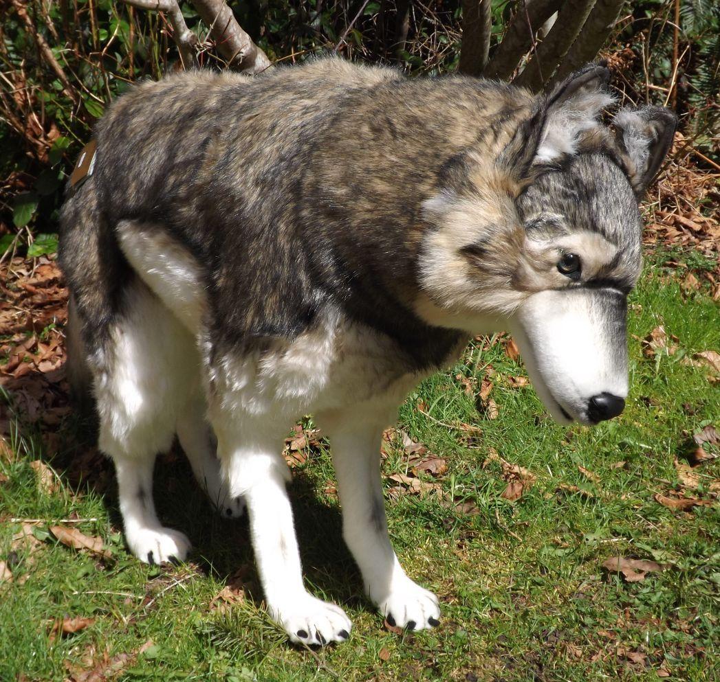 "Wolf Stuffed Animal 39"" Large Stuffed Standing Wolf from"