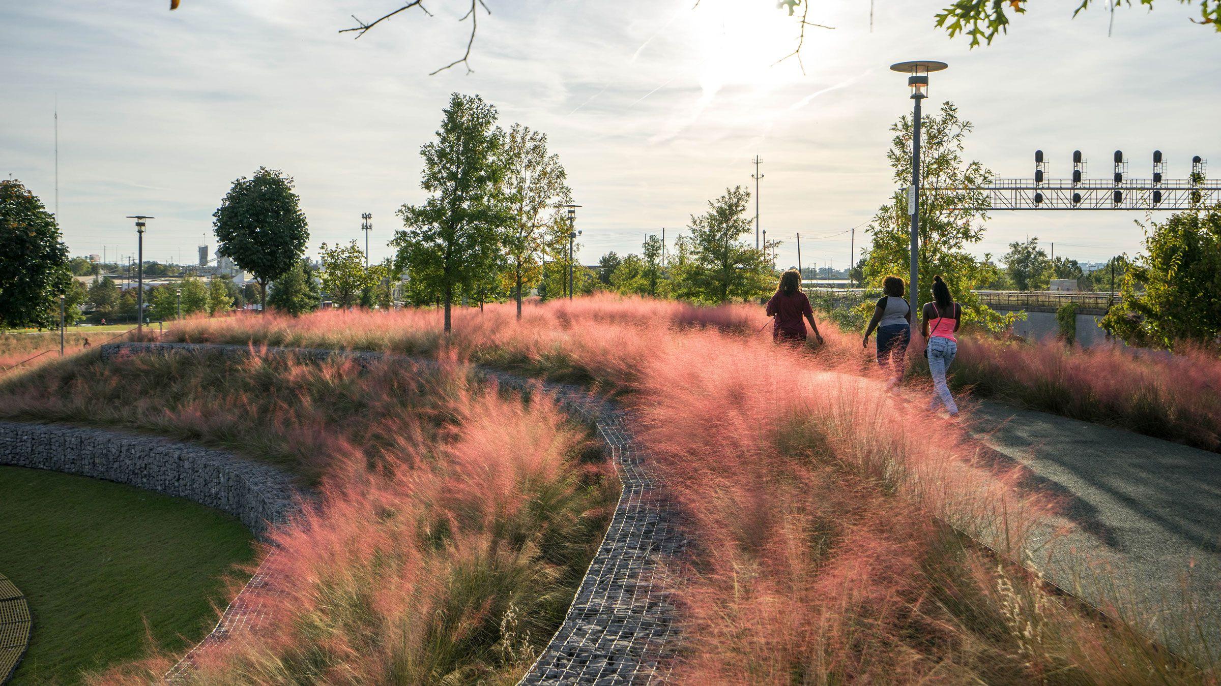 Railroad Park Tls Landscape Architecture Landscape Architecture Landscape Design Cultural Landscape