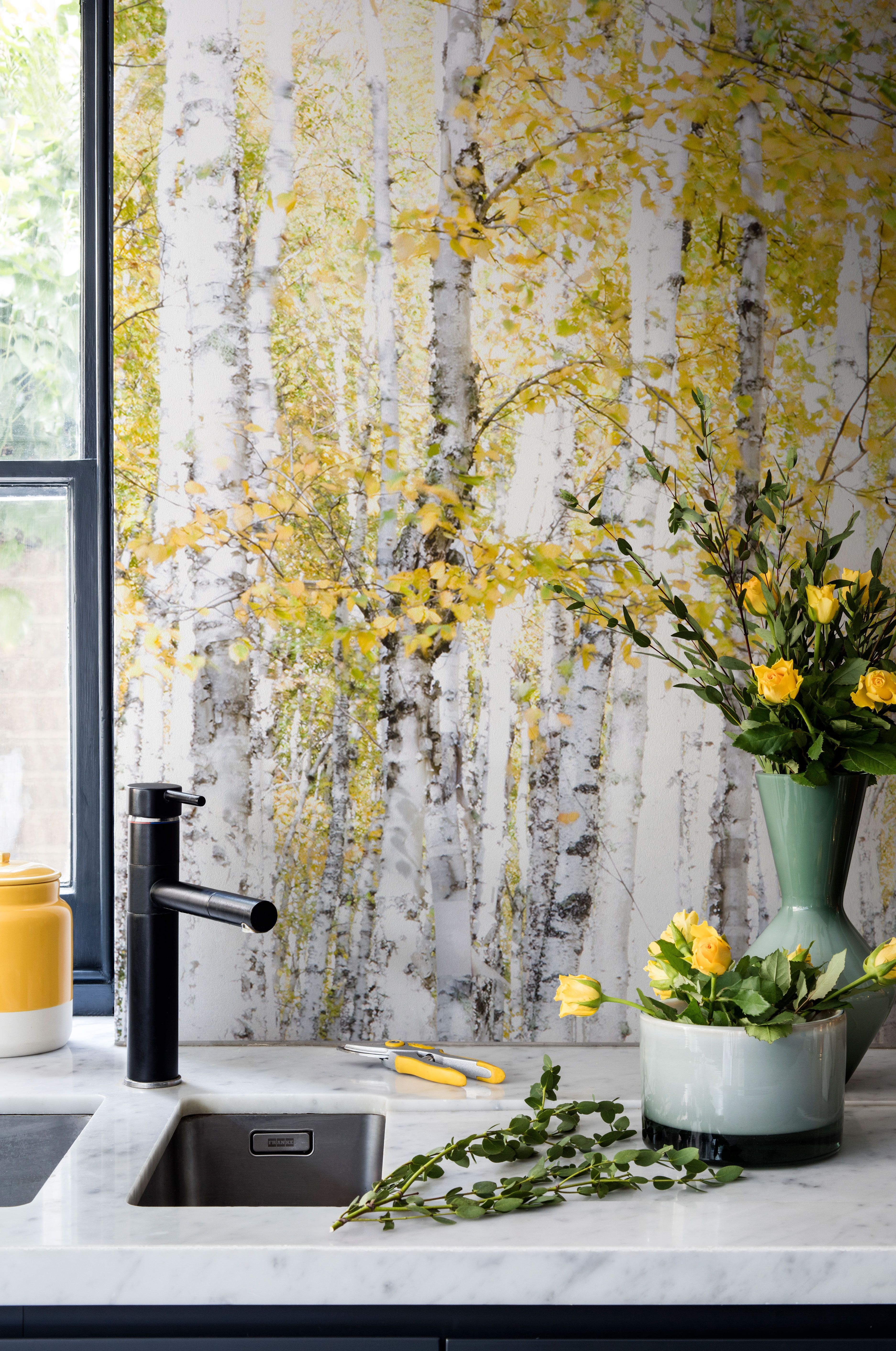 Bring warmth into your kitchen with this yellow birch tree