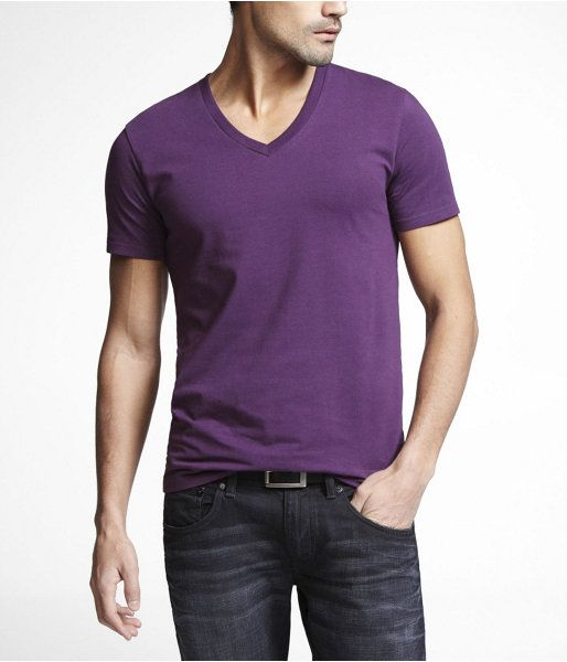 Express Mens Stretch Cotton Deep Vneck Tee Purple, Large