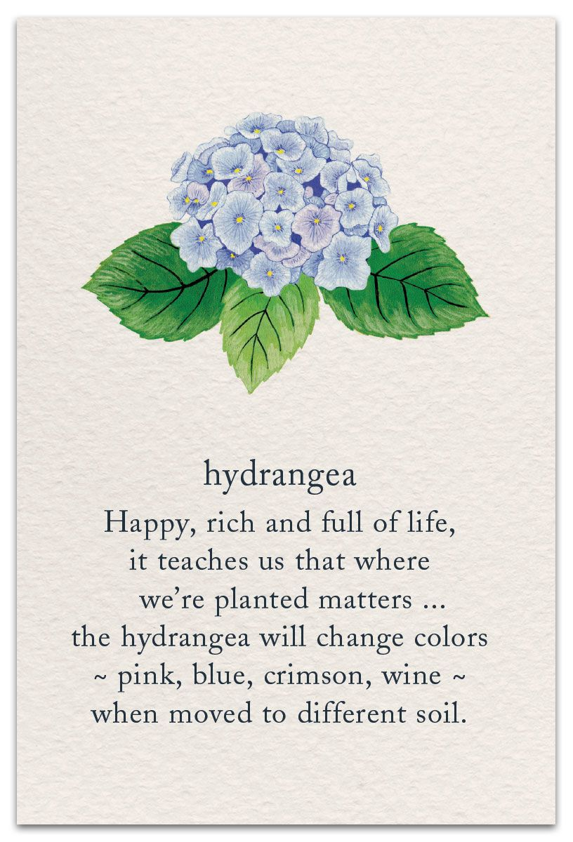 Hydrangea New Home Card Cardthartic Com Flower Quotes Flower Meanings Symbols And Meanings