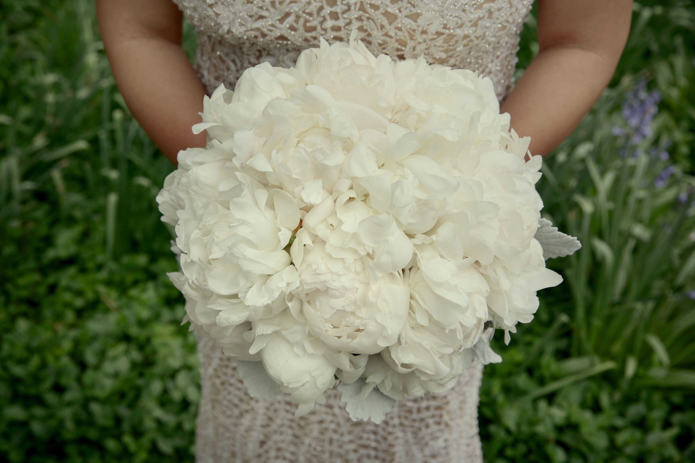 Adler Wedding (With images) Wedding, White