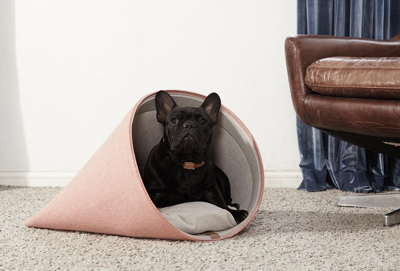 Modern Dog Beds and Accessories from HOWLPOT | Dog ...