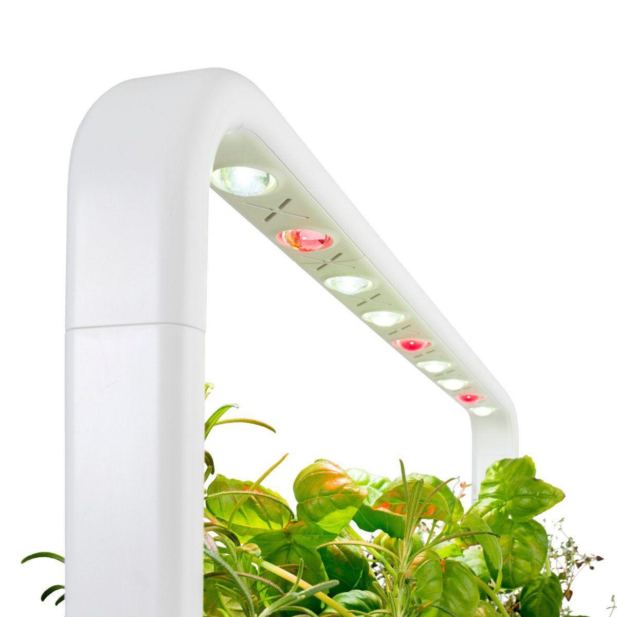The Smart Garden 9 With Images Indoor Garden Indoor 400 x 300