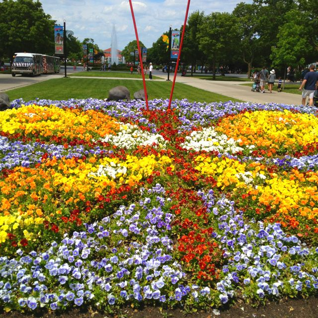 Brookfield Zoo S Landscaping Creative Butterfly Flower 400 x 300