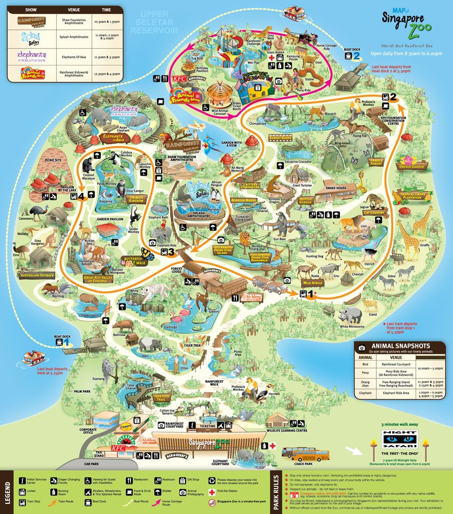 Image result for singapore zoo map