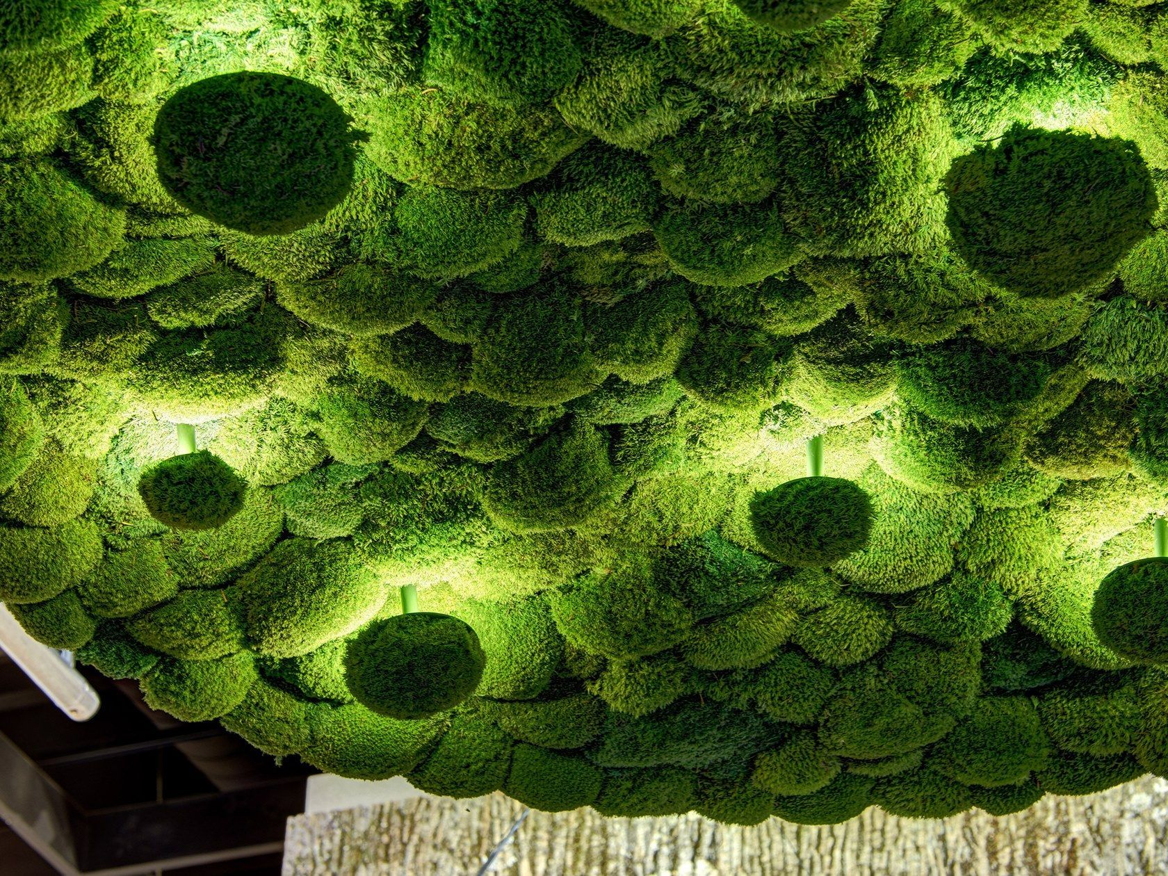 37 Best Indoor And Outdoor Moss Decorative Ideas In 2019 Wall